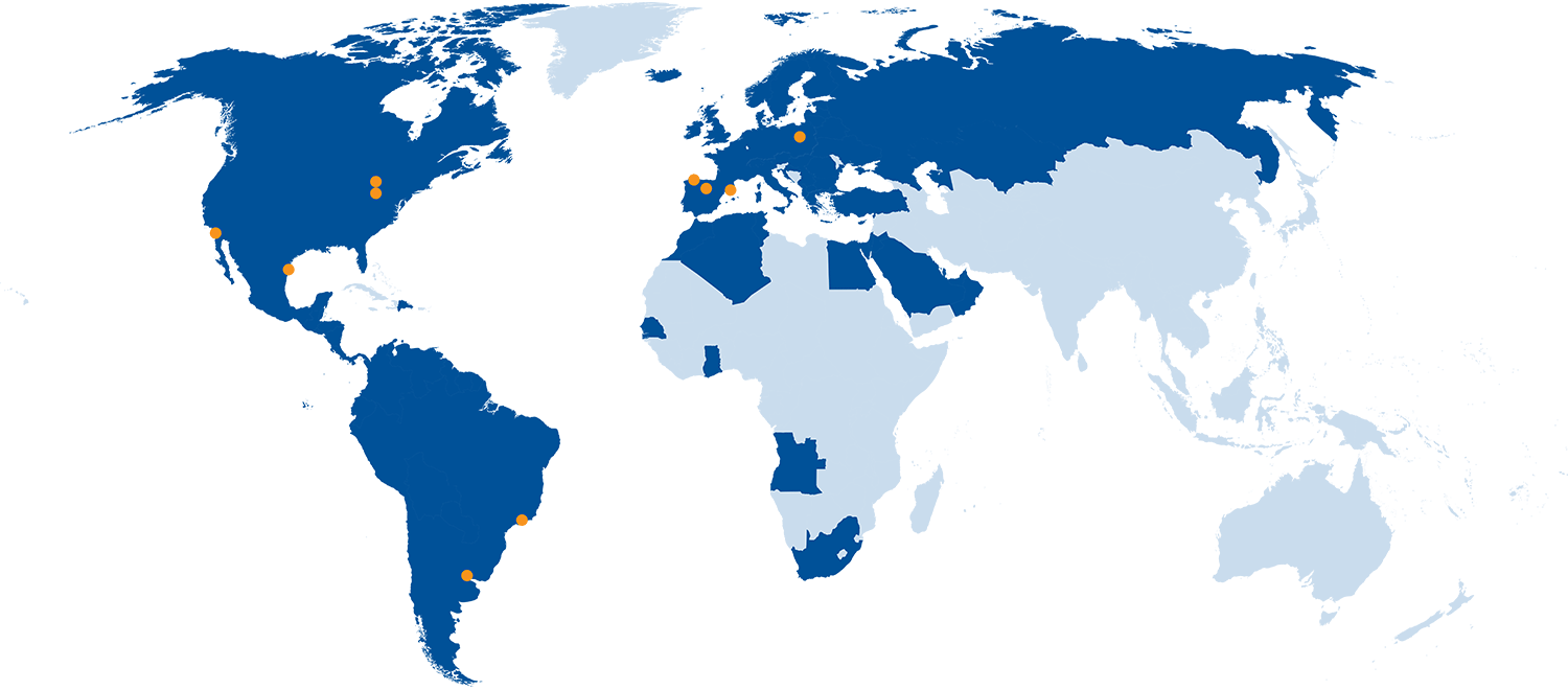 The Group's position in the world