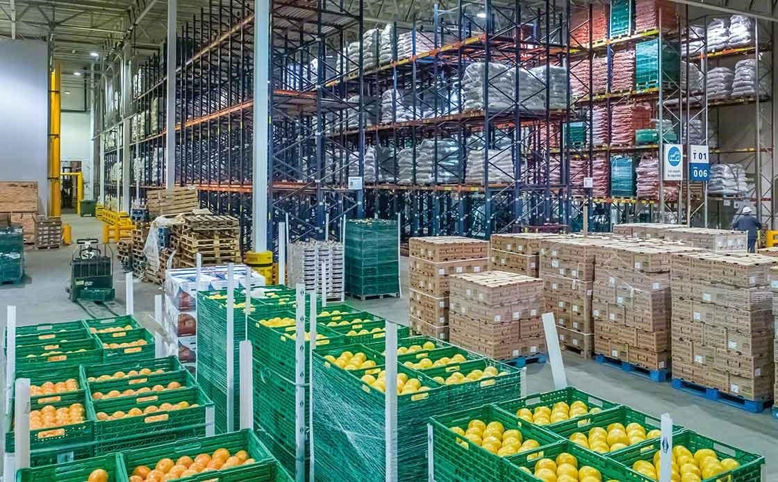 Fresh fruit warehouse. For the correct conservation of the fruit the cold chain must not be broken.